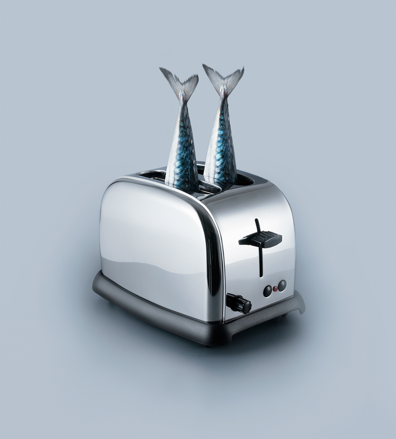 Fish-Toaster-Large-